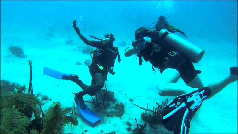 bajo-las-aguas-de-dominicana01