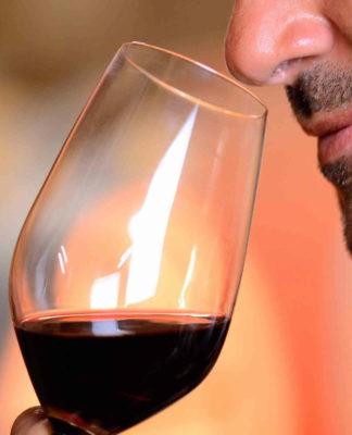 Presentan marca colectiva de vino mexicano