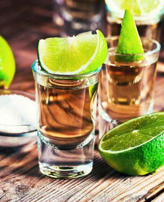 Barceló hará la cata de tequila más grande del mundo