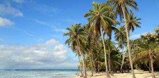 Jamaica el Destino Líder en el Caribe