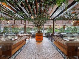 Olenna, sabores mediterráneos en CDMX