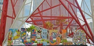 El estado de Puebla presente en CNIR